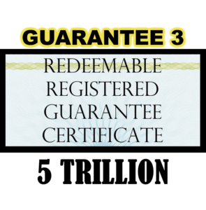 True US Dollar Redeemable Guarantee 3 Certificate - 5T