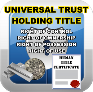 universal-trust-single-entry