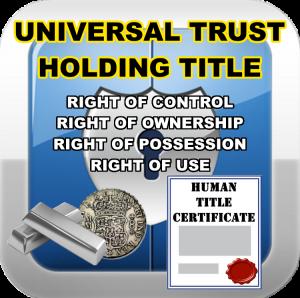universal-trust-single-entry